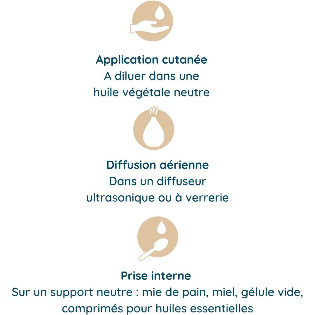 Interne, diffusion, massage